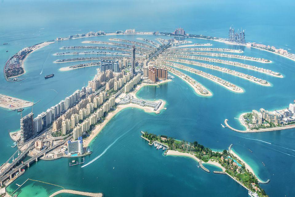 Atlantis Palm